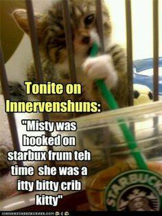 now I know how coffee Kitty got her start...