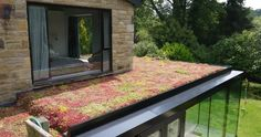 diy green roof extension uk - Google Search