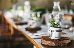 Tiny succulents in mugs as wedding favours at a #Karoo #wedding. Inspiration by Jacques Muller @joxdsgn #nieubethesda