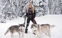 Dwa psy zimą