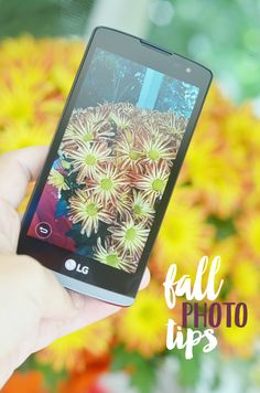 Create your own autumn family photographs with these simple fall photography tips! These inspirational ideas will create fun seasonal photos in a hurry! #BestPlans4Fall AD