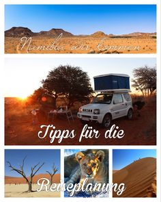 www.barfussimsand.de, Reiseblog, Reiseberichte, Afrika, Namibia, Sossusvlei, Deadvlei, Windhoek, Camper, Lodge, Löwen, Elefanten, Geparden, Spitzmaulnashorn