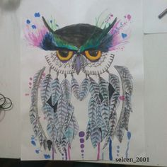 Owl drawing. Instagram:@selcen_2001