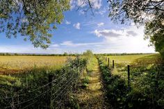 Rural Cotswold landscapes Inn travel company website