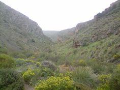 Prinavera en el barranco de Cacín