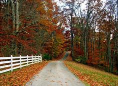 Ashland, KY By Kywxgal  Beautiful fall foliage is colorful and inviting from the foothills of northeastern Kentucky.