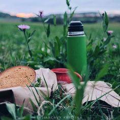 Picnic in Oktober coffee thermos outdoor food flowers adventure