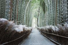 Zen Snow by Pete Wongkongkathep on 500px