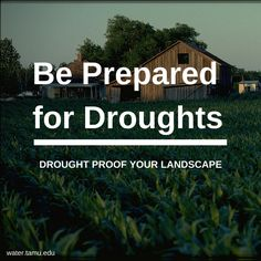 """Water is a major aspect of our everyday life and due to droughts, we find ourselves in tough situations when droughts approach. Find out how to be prepared for droughts by reading """"Drought Proofing Your Landscape"""" pdf."""