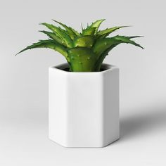 Find product information, ratings and reviews for Artificial Small Aloe Plant with White Pot - Project 62™ online on Target.com. #affiliate