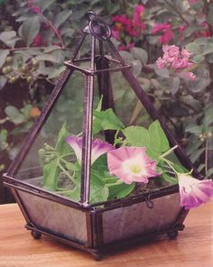 Garden Style 24-111 Mini Pyramid Greenhouse - Black: Amazon.co.uk: Garden & Outdoors