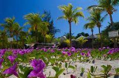 Honduras Beaches - Bing Images