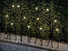 Gorgeous Outdoor Lighting Ideas That Bring Magic Into The Backyard Outdoor Party Lighting, Outdoor Parties, Cool Lighting, Lighting Design, Lighting Ideas, Garden Lodge, Coffee Shop Interior Design, Wine Bottle Candles, Beach Gardens