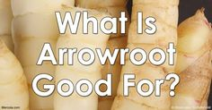 Arrowroot contains several B vitamins, minerals and zinc that provide necessary nutrients for your body. Find out more about the health benefits of arrowroot. http://articles.mercola.com/sites/articles/archive/2016/06/13/arrowroot-uses.aspx