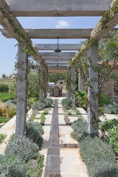 Shady Canyon - mediterranean - patio - orange county - by Mark Scott Associates | Landscape Architecture