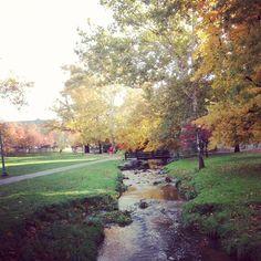 Indiana University #Bloomington campus