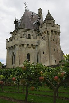 Vez Castle Keep, France....SUPERB!  I can see this in Texas Hill Country....it would fit right in....what an amazing place!
