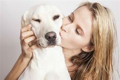 6 SIGNS YOU AREN'T DOING ENOUGH FOR YOUR DOG--Life happens. Even the most devoted pet parent can get bogged down with running the kids to afterschool activities, stressing out about work and spending way t All Dogs, I Love Dogs, Dogs 101, Dog Information, Hunting Dogs, Happy Dogs, Dog Care, Mans Best Friend, Animals And Pets