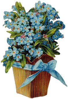 Flowers526