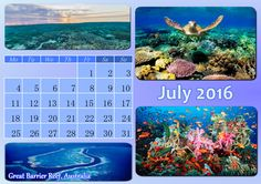 Need some fresh air when summer is in its full swing? This calendar will move you to the shore of Australia. Check out the gallery: http://photo-calendar-software.com/monthly-calendars.php and get inspired to create your own design! #MonthlyCalendar #JulyCalendar
