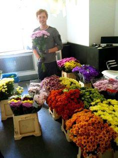 Wir haben heute hohen Besuch von Starflorist Björn Kroner, der uns zeigt, was die Chrysantheme so alles hergibt!