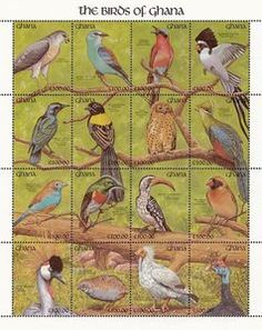 Birds of Ghana - Mini Sheet with MiNo. 1562-77