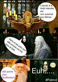 Saga Harry Potter, Harry Potter Disney, Harry Potter Comics, Harry Potter Anime, Harry Potter Jokes, Harry Potter Universal, Harry Potter World, Gellert Grindelwald, Doctor Who