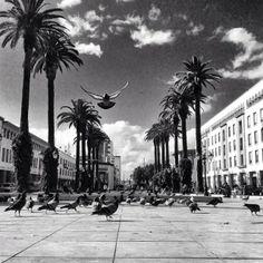 Rabat | الرباط