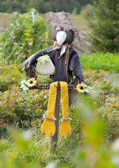 Linnunpelätin pitää linnut pois marjojen ja muiden syötävien kimpusta. Katso Viherpihan ideat linnunpelättimiin.