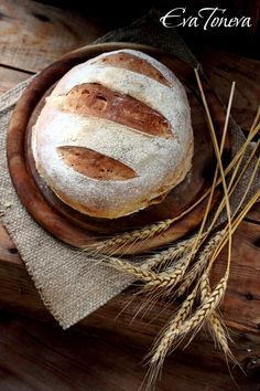 Pain de Campagne/French rustic bread