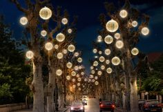 Gorgeous illumination in the trees lining the streets. #lighting #fesive #cspdisplay