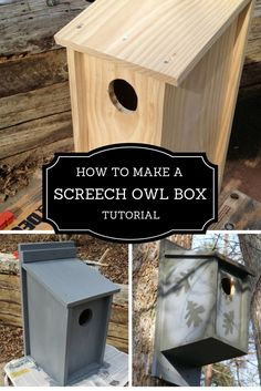 nest boxes for owls how to make
