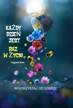 Motto, Humor, Motivation, Sayings, Words, Funny, Movie Posters, Pictures, Polish Sayings