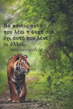 Greek Quotes, Attitude, Words, Funny, Tips, Projects, Log Projects, Mindset, Ha Ha