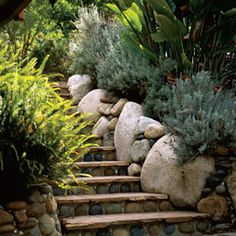In Laguna Beach, a drainage ditch is transformed into a paradise garden.