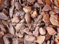 Piniová kůra Wood, Garden, Crafts, Garten, Manualidades, Woodwind Instrument, Timber Wood, Lawn And Garden, Wood Planks