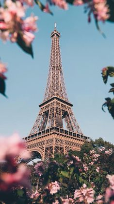 Paris, the most beautiful place in the world ? - Lady Womans Paris, the most beautiful place in the world 🌍 Beautiful Paris, Beautiful Places In The World, Cute Wallpaper Backgrounds, Pretty Wallpapers, Cool Wallpapers For Iphone, Flower Wallpaper, Wallpaper Quotes, Paris Photography, Nature Photography
