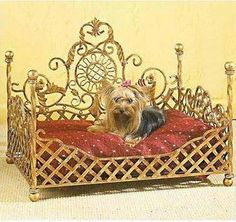 Wrought Iron Decorative European Style Pet Bed (No Cushion)