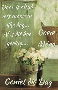 Goeie More, Good Morning Wishes, Words, Horse