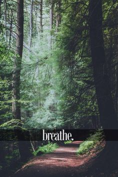 Hey, you're okay. You'll be fine. Just breathe.