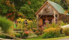 No cabe duda de que el otoño es la época del año en la que nuestro jardín está más encantador que nunca, ese momento en que las hojas se tiñen de amarillo,