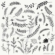 Hand Drawn Branches and Leaves Botanical Line Drawing, Floral Drawing, Leaf Drawing, Vine Drawing, Bullet Journal Ideas Pages, Bullet Journal Inspiration, Floral Doodle, Flower Doodles, Mini Tattoos