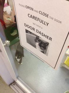 PLEASE OPEN AND CLOSE DOOR CAREFULLY WE HAVE A DOOR DASHER #catoftheday