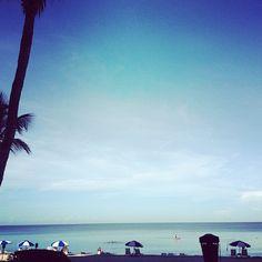 Avoriophoto & Co.: * Summer Holidays - Everglades + Naples *