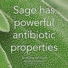 Sage benefits