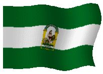 Bandera Gif Andaluza