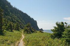 Le Cap-à-l'Orignal (parc national du Bic) Bas Saint Laurent, Le Cap, Parc National, Country Roads, Nature, Naturaleza, Nature Illustration, Off Grid, Natural