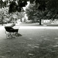 Picture of Pearson Park taken by Philip Larkin. William Wilberforce, Philip Larkin, Kingston Upon Hull, East Yorkshire, 12th Century, Britain, England, Park, History