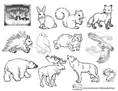 The Animals' Santa by Jan Brett: an OMazing Kids Yoga Lesson Plan & free printable coloring page. Post also includes a playlist & craft idea: http://omazingkidsllc.com/2014/12/06/the-animals-santa-an-omazing-kids-lesson-plan-free-printable-coloring-page/