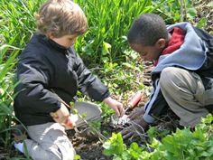 Students working hard in Tamarack's community garden.